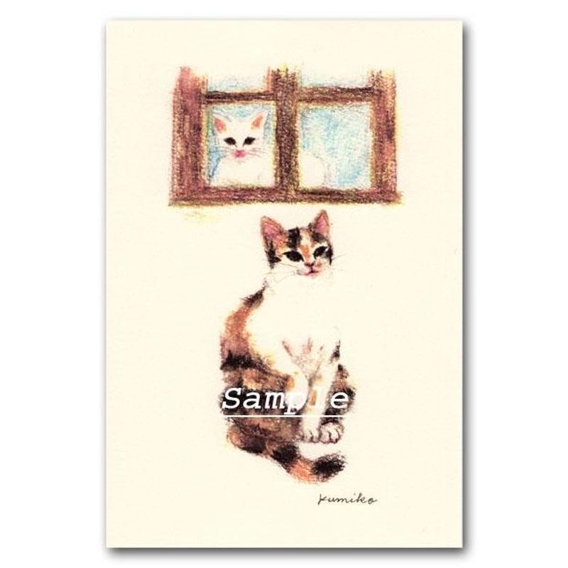 猫ポストカード27