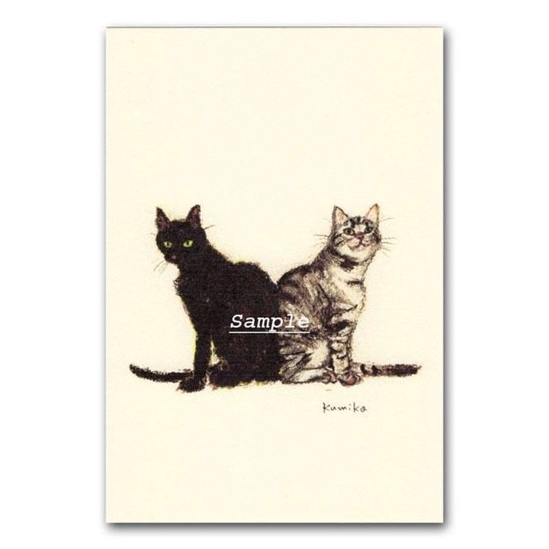 猫ポストカード5