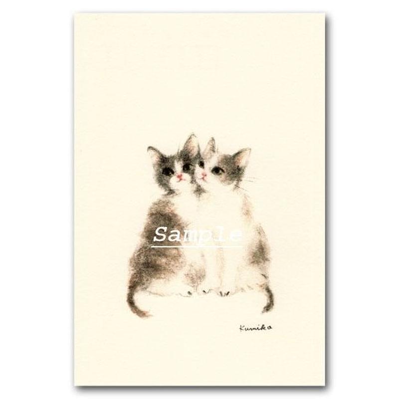 猫ポストカード26