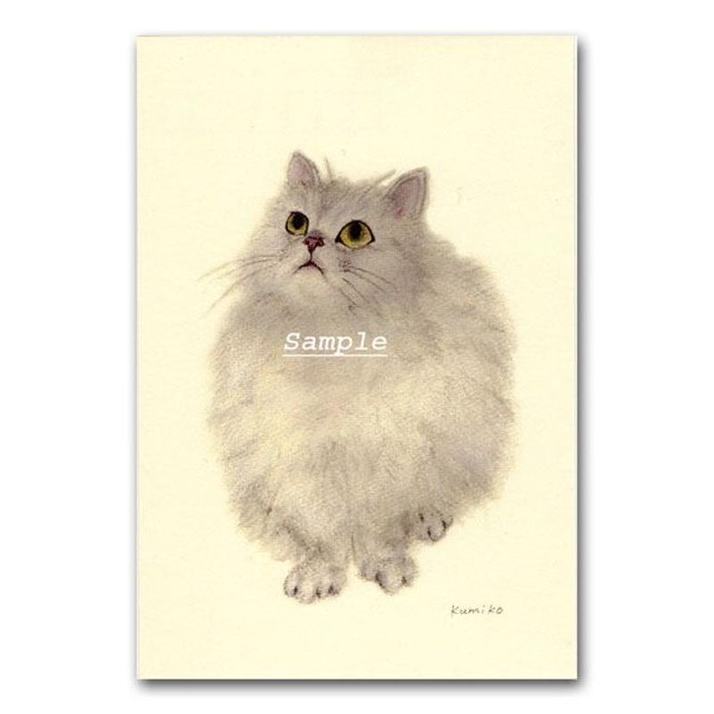 猫ポストカード14