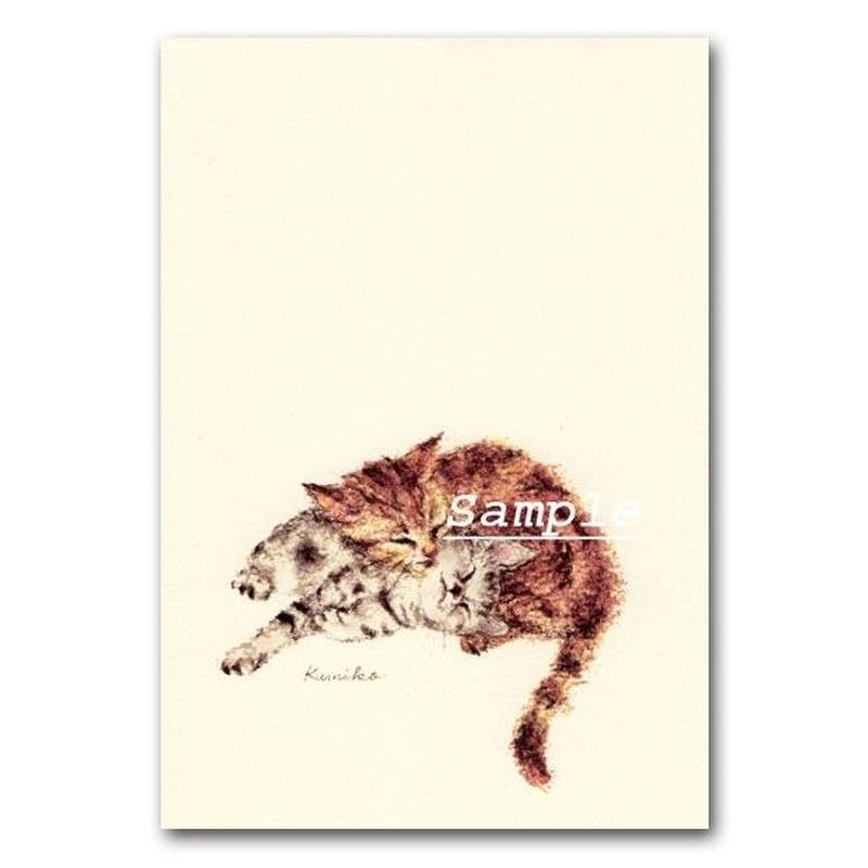 猫ポストカード25