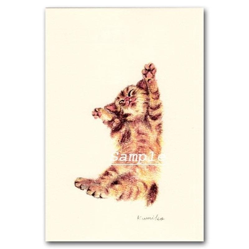 猫ポストカード30