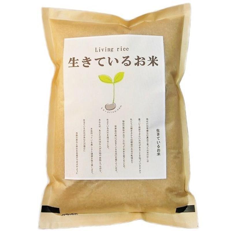 自然栽培  生きているお米 ササニシキ  玄米2kg  無肥料 無農薬栽培 残留農薬 放射能もゼロ