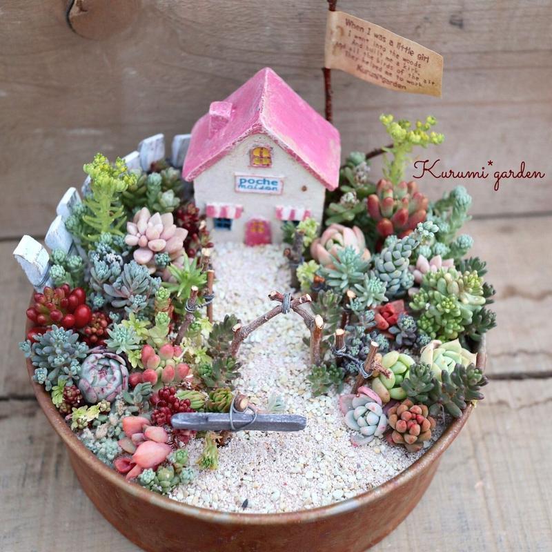 多肉植物の箱庭(ピンクの屋根のおうち)