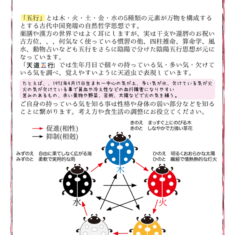 天道五行(一人分)