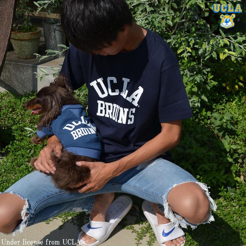 [UCLA-0375] UCLA 6.2oz半袖Tシャツ