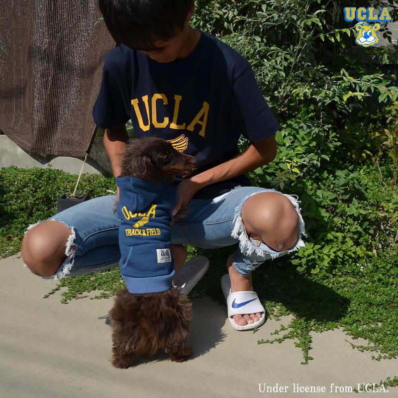 [UCLA-0371] UCLA 6.2oz半袖Tシャツ