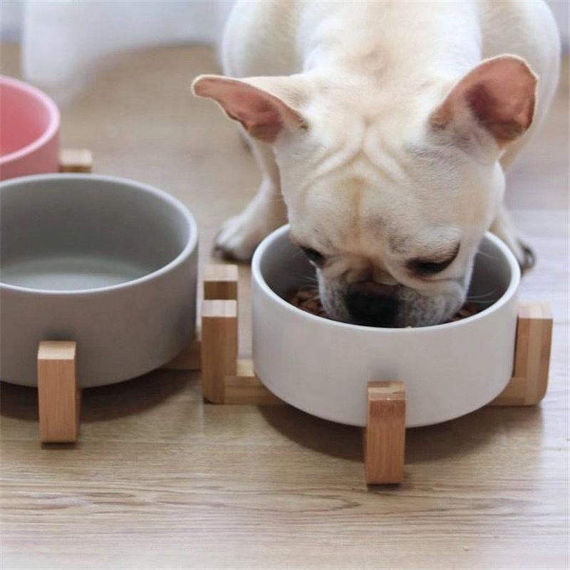 【LAMODA】深さあり!大きめのエサ入れ 犬猫兼用 フードボウル  お皿 食器 陶器 小型犬 猫 ボウルのみ電子レンジOK