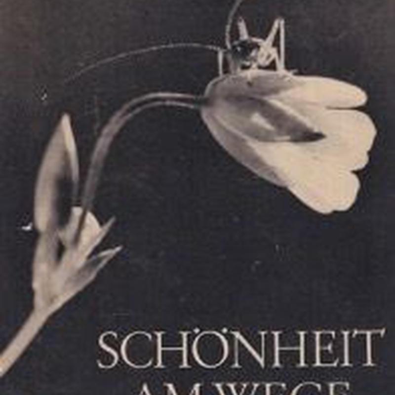 SCHONHEIT AM WEGE /DR. PAUL WOLFF UND ALFRED TRITSCHLER