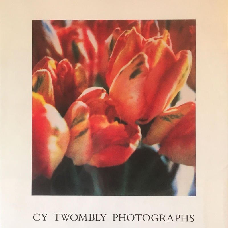 PHOTOGRAPHS / Cy Twombly