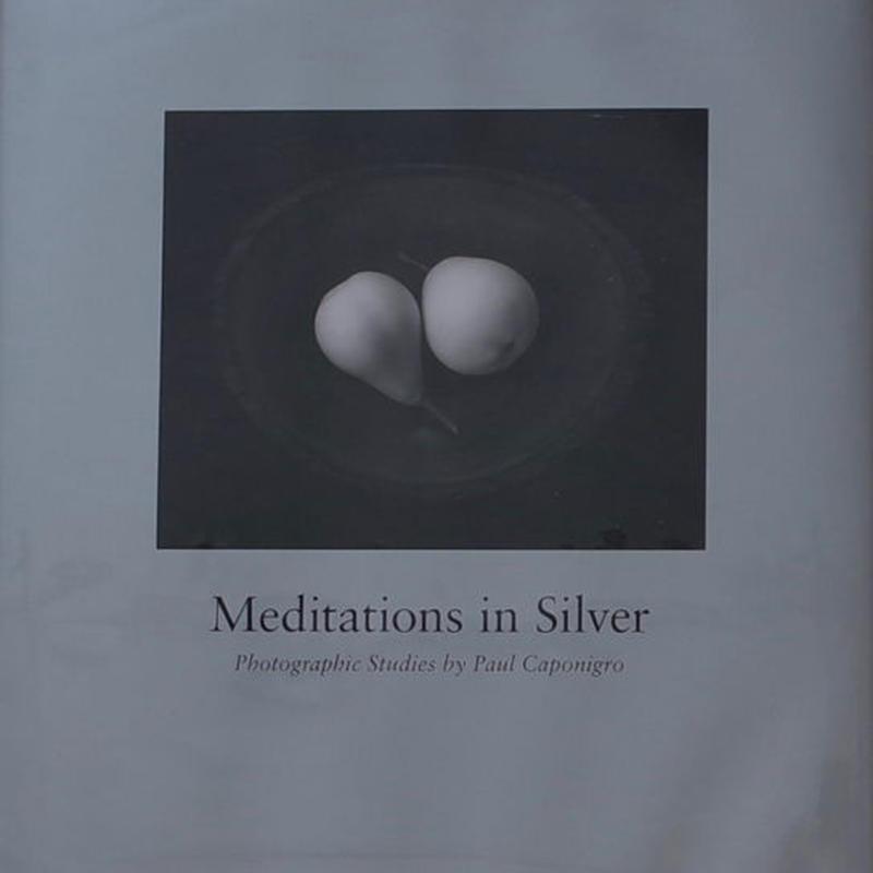 Meditations in Silver / Paul Caponigro