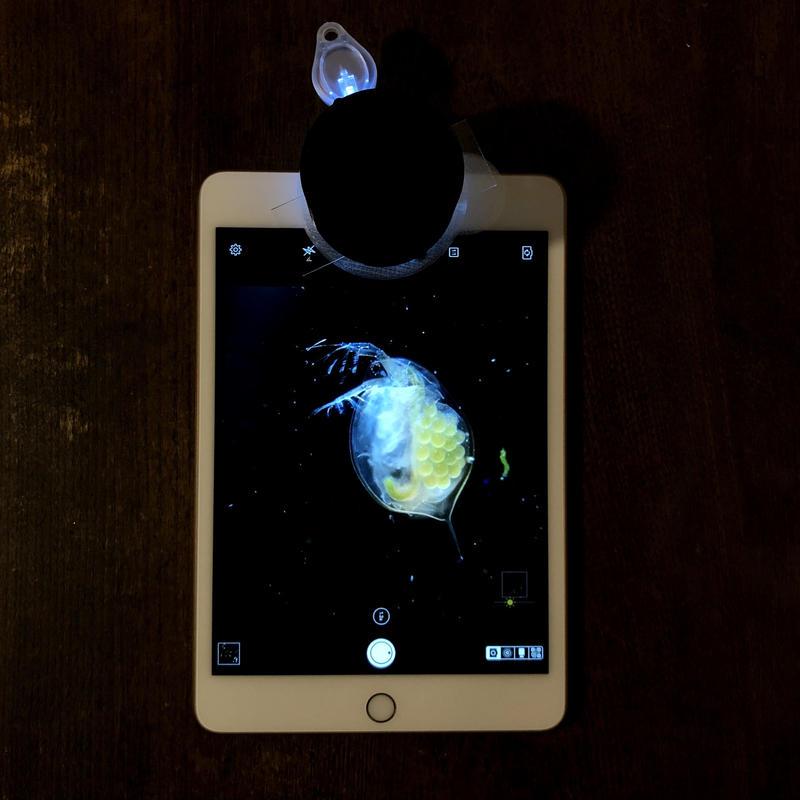 モバイル顕微鏡用蛍光・暗視野照明ユニット