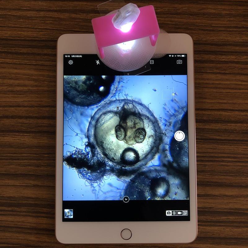透過/反射型モバイル顕微鏡MM7.0S(x20-80) Egg