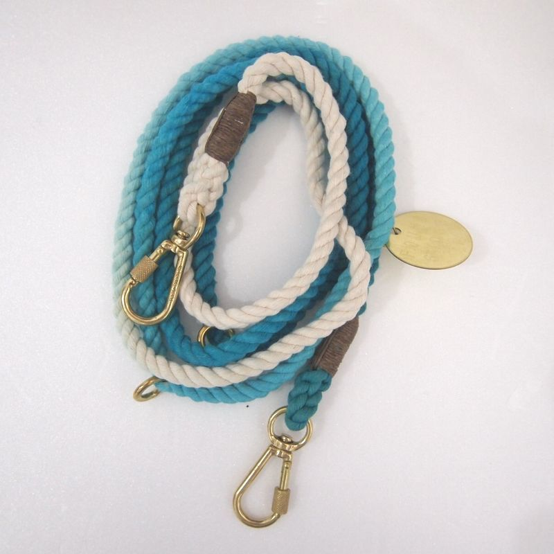 Found My Animal ADJUSTABLE DOG LEASH(TEAL OMBRE)