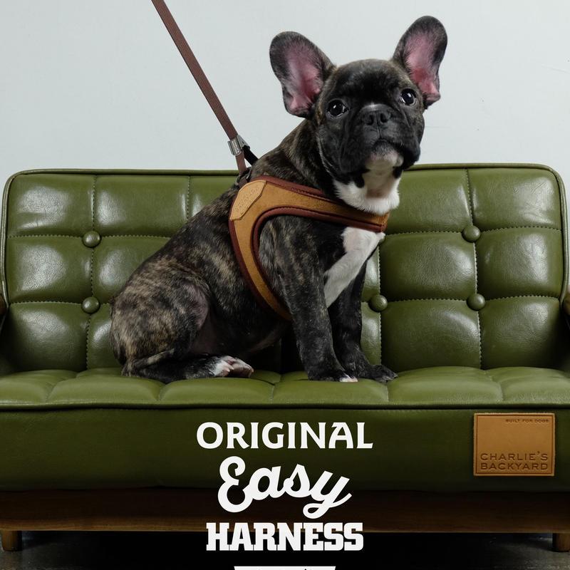 感謝セール!Charlies Backyard Original Easy Harness (イージーハーネス)S size