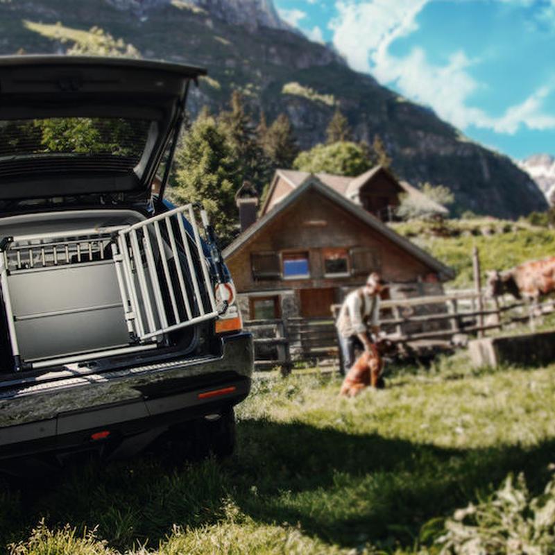 BIG SALE !! スイス製 4Pets (フォーペッツ)ドッグボックス イーグル (Eagle) スタイリッシュな 中型 大型犬用ドッグボックス 犬用 (Lサイズ) 中型~大型犬用