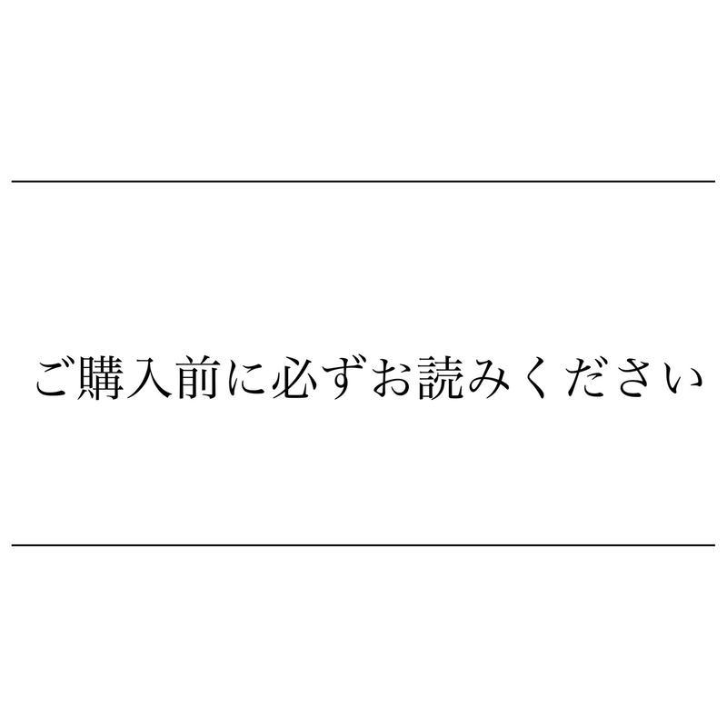☆ご購入前に必ずお読みください☆