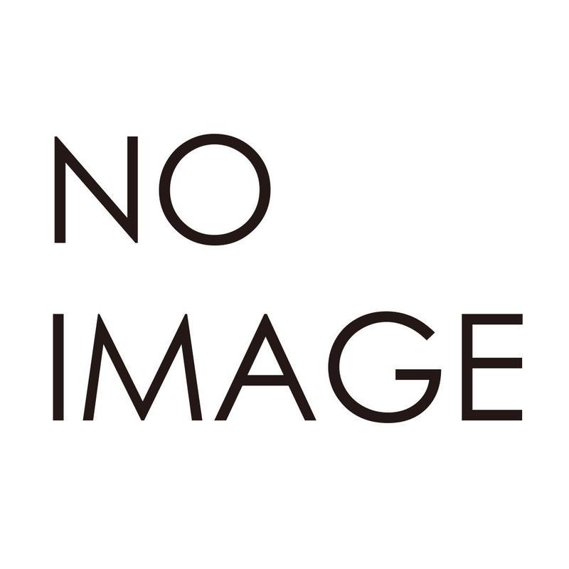 作家の直筆サイン入り!Twins art 3D【Abidu In The Ghana's Grand】エディションNo.100
