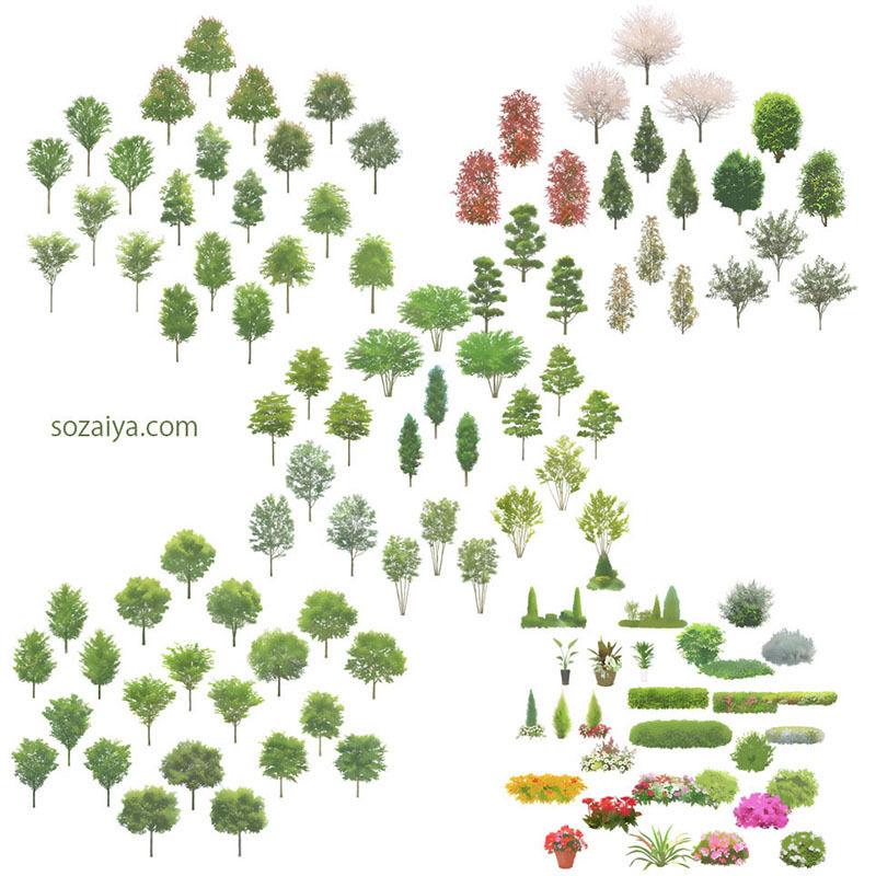 樹木イラストセット  4e_006