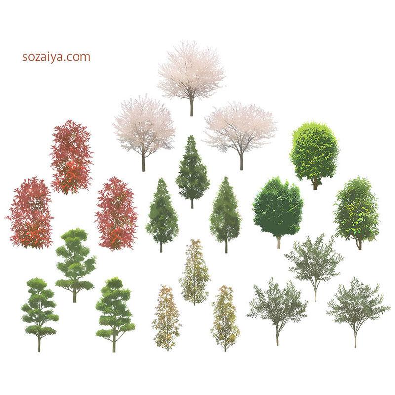 樹木イラスト 4e_004