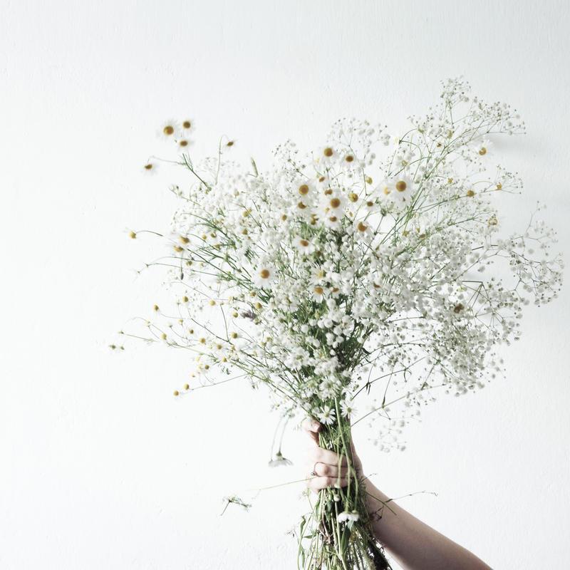 2019.1.25.Fri 冬のお花を使ったポートレート撮影と、ブーケ作り。