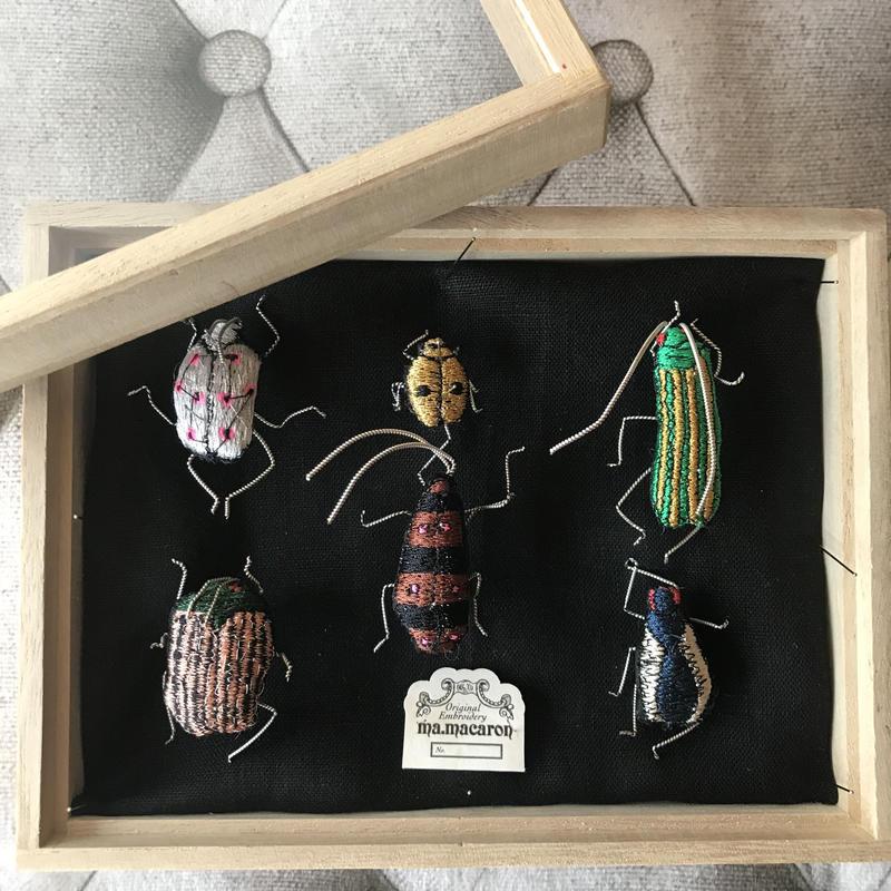 昆虫標本箱