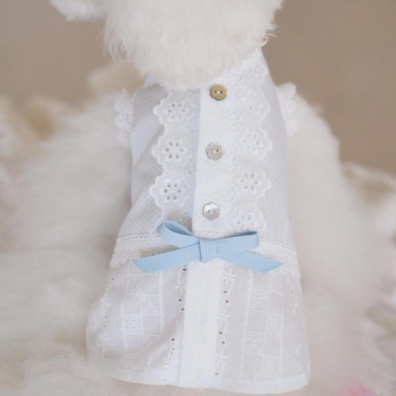 【 Picnic of Marie Antoinette】Trianon Prince(トリアノンプリンス) サイズXS/S