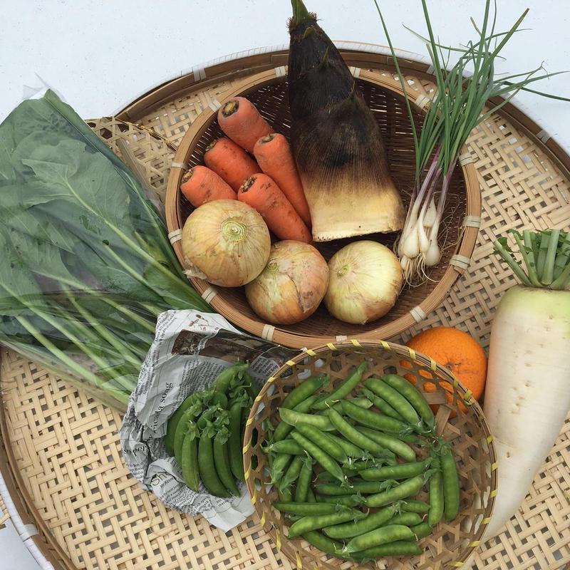 【定期おトク便:大家族・月1回】無農薬 野菜セット  (税、送料、夏季クール便代込み)