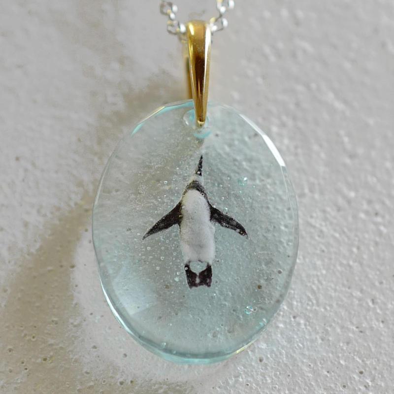 ケープペンギン(penguin045)