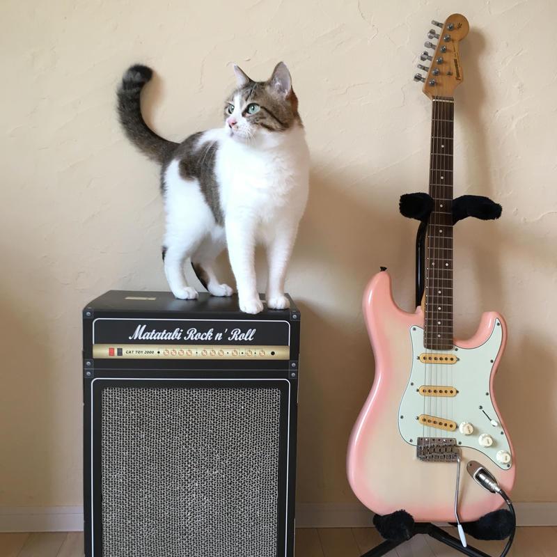 またたびロックンロール ギターアンプ(爪とぎ)2個セット