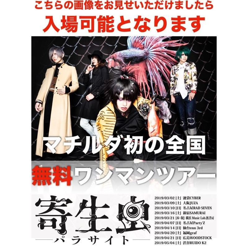 2019/03/21[木 / 祝日]横浜 Music Lab.濱書房  『寄生虫-パラサイト-』