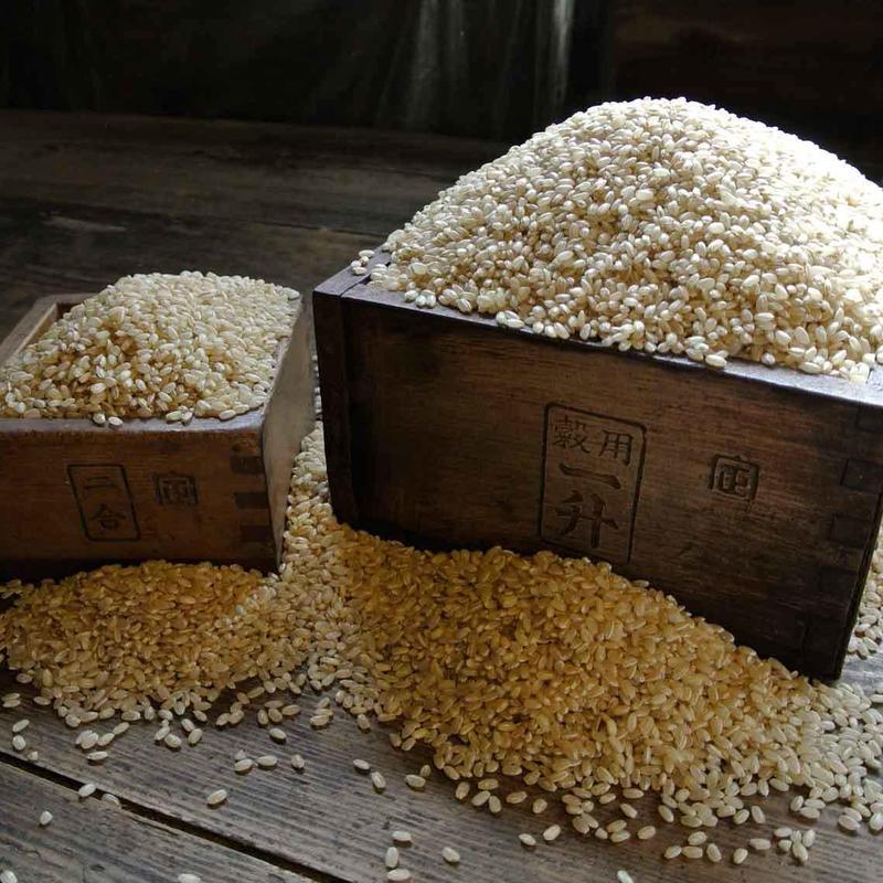 【新米】自然栽培 ひのひかり 玄米 5kg