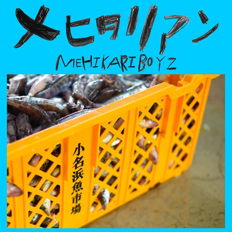 メヒタリアン/MEHIKARIBOYZ