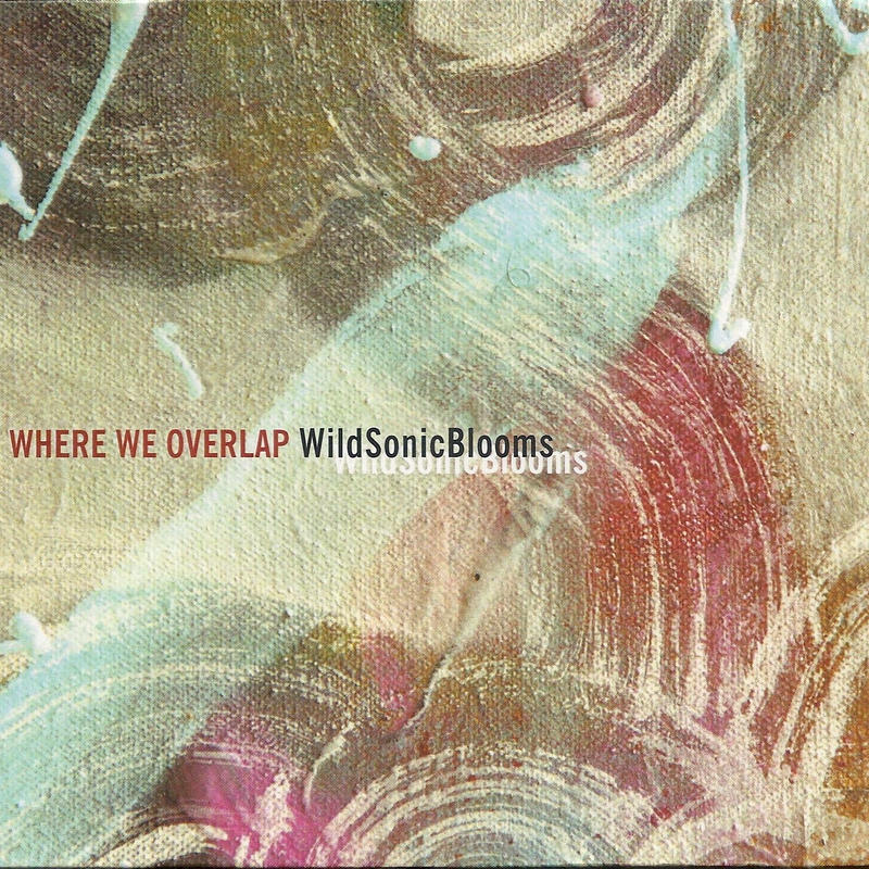 WildSonicBlooms - Where We Overlap (CD/Album/2018)