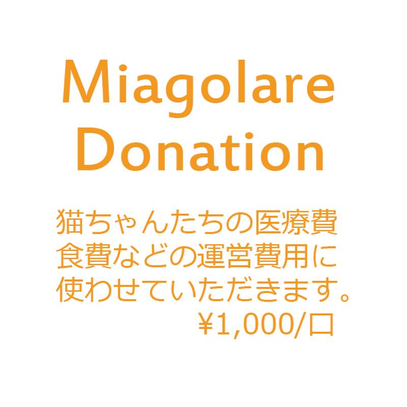 Miagolareの猫ちゃんへのご支援