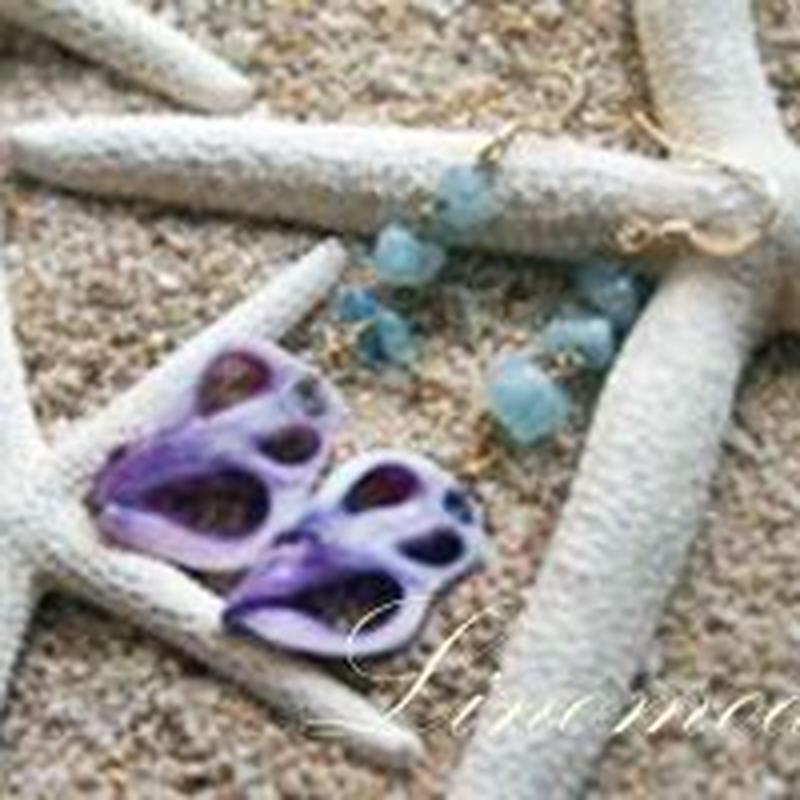 Purple cut shell & Aquamarine Pierce
