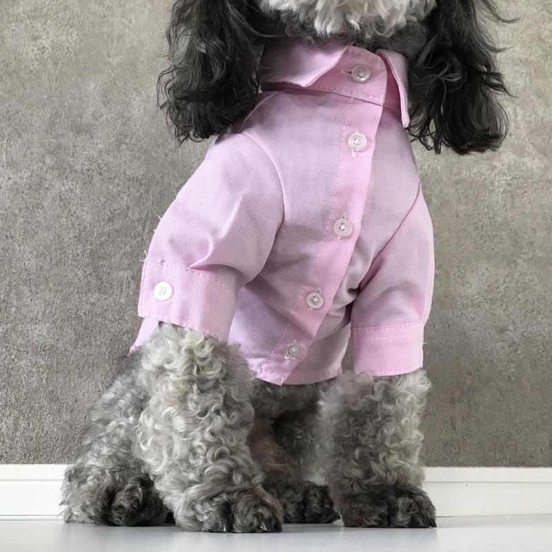color shirt . [ pink ]