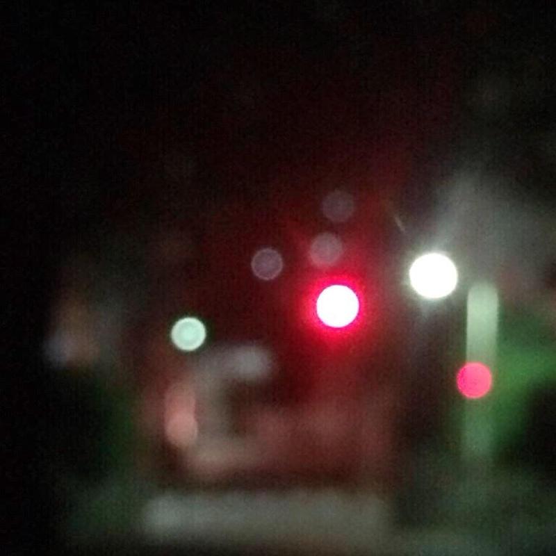 『ルポ渋谷』02-道玄坂発、メガドンキ行 commentary(何処に行っても犬に吠えられる)
