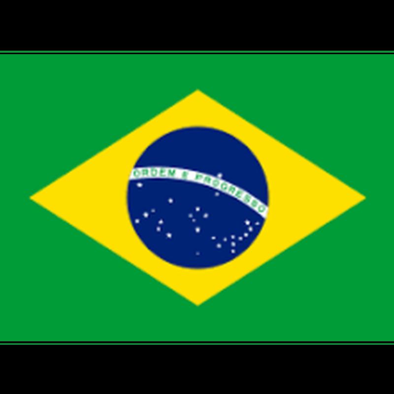 ブラジル トミオフクダ サンドライ 200g 【深煎り】