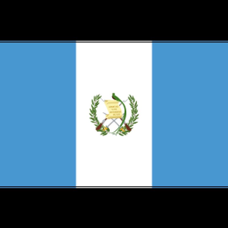 グアテマラ アンティグア ラ・フォリー 200g【中煎り】