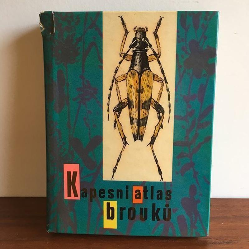 チェコ 昆虫図鑑 book-045