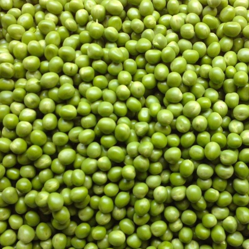 【数量限定】自然農(無農薬・無肥料・不耕起) グリーンピース500g(〜4kg購入可)  [BIG FAMILY FARM] made in 佐賀県