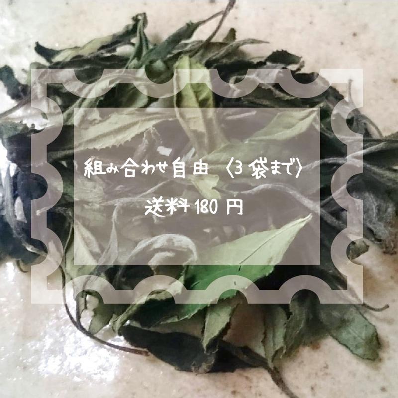 ●組み合わせ自由〈3袋まで〉送料¥180●自然栽培(無農薬・無肥料) 白茶〈新茶〉 [加茂自然農園] made in 京都府
