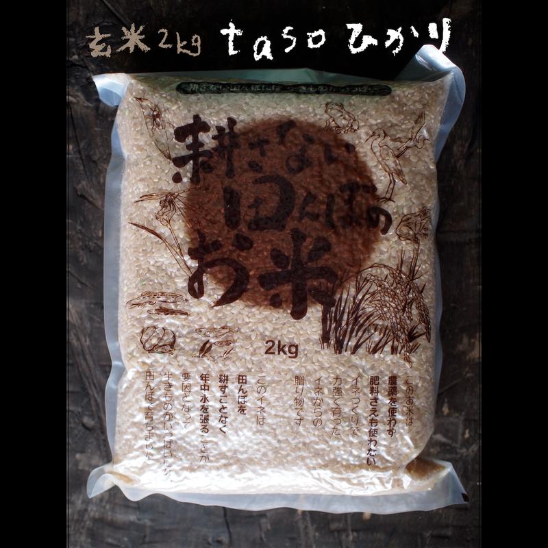 不耕起・無農薬・無化学肥料栽培 tasoひかり(コシヒカリ) 玄米2kg[ファームガーデンたそがれ] made in 秋田県