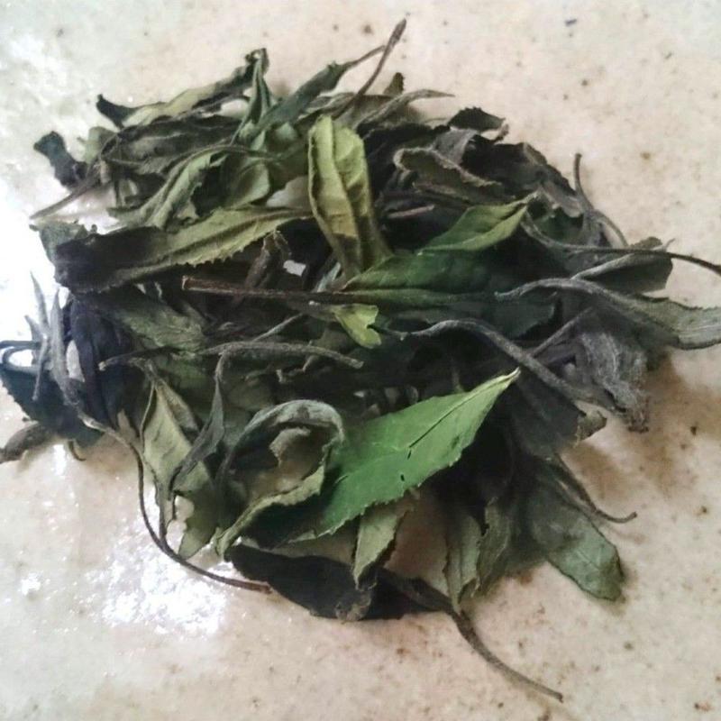 自然栽培(無農薬・無肥料) 白茶〈新茶〉 [加茂自然農園] made in 京都府