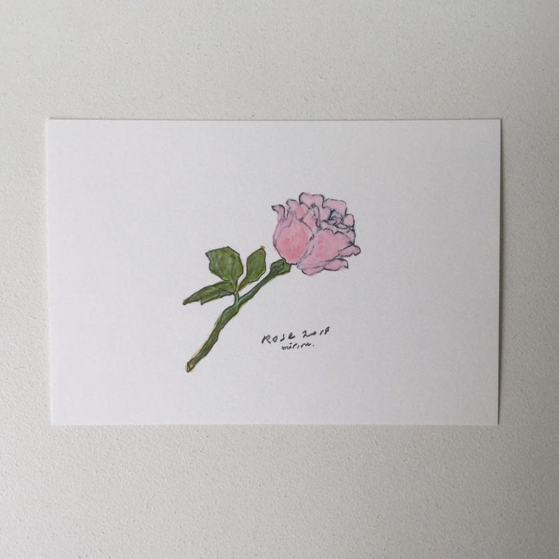ポストカード rose2018