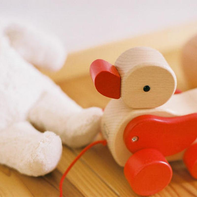 〈1才-〉【引いて歩く玩具】あひる