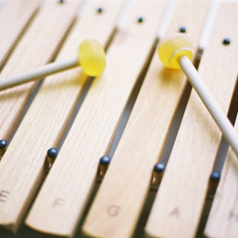【木琴】【聴く・弾く】アウリスシロホン ダイヤトニック8音