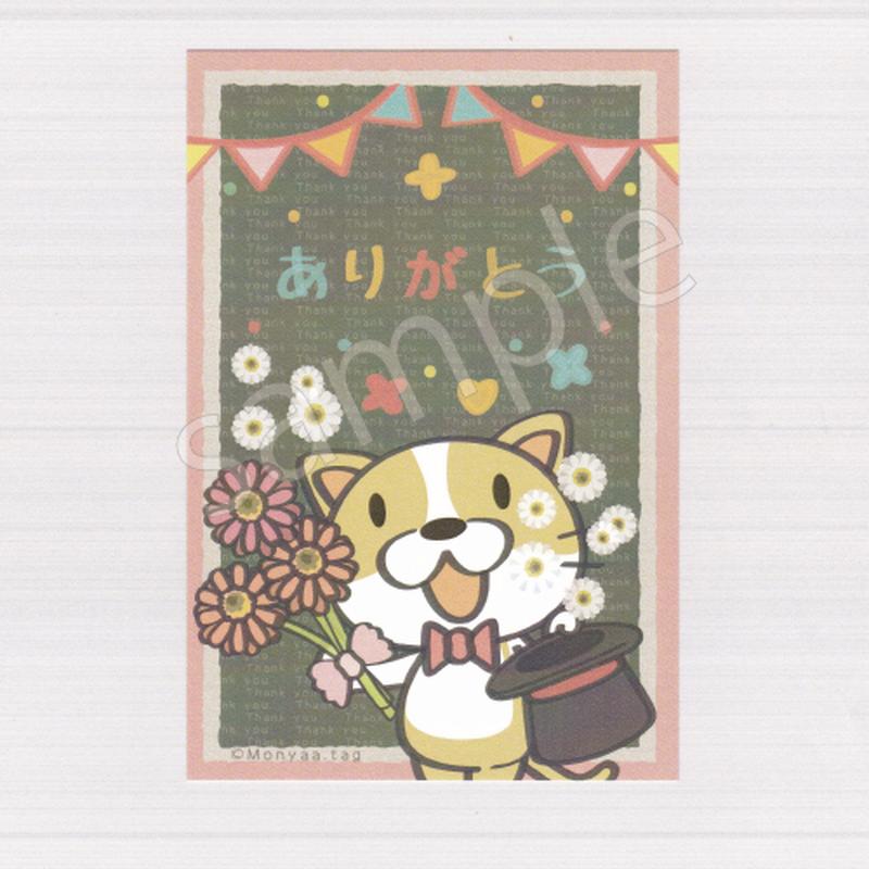 PC17白とピンクのガーベラでありがとうを伝えるネコのネッコのポストカード