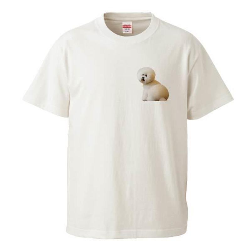 SHIRASU NO OKETSU♡ Tシャツ  (両面プリント)